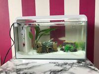 """25l """"Home 25 Superfish"""" aquarium"""