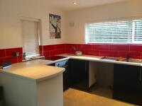 Renovated Semi Detached One Bed Bungalow in Bilborough