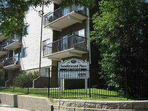 *INCENTIVES* 1 Bdrm w/ Dishwasher & Balcony~93