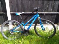 """Mountain bike Apollo XC26 blue, 14"""" frame"""