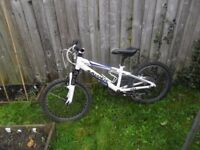 "Boys Mountain Bike, 20"" Wheel, Avalanche, White & Blue"