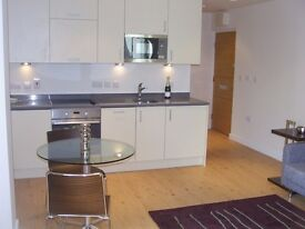 luxury studio flat in development close to colindale,also has use of gymnasium and a parking space.