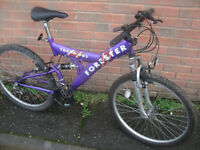 Forester Trend Mountain Bike