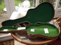 HOFNER VERYTHIN RARE GUITAR CASE WHEN WILL YOU SEE ANOTHER BUY IT NOW