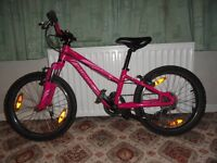 """Specialized Hotrock 20"""" Girls Bicycle"""