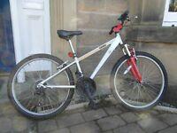Cairn Revolution 18 speed bike with 24 inch wheels and lightweight aluminium frame