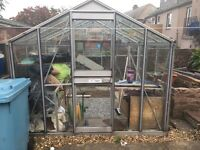 Greenhouse 10x8ft Baco Professional