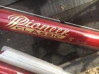 Raleigh Pioneer Classic 5 Ladies Bike