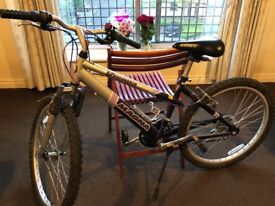A ladies bicycle in good condition is available for sale.