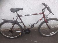 Raleigh Nitro 15. Men's Mountain Bike. Fully serviced, fully safe and ready to go.