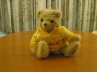 shaggy 12 inch teddy bear wearing a jumper with his name