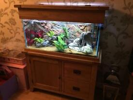 Solid oak tropical fish tank (full set up)