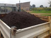 Mushrooms compost