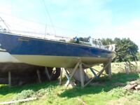 28ft Sailing yacht for sale