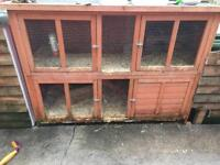 Guinea pigs and 2 tier hutch