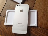 Iphone 5s with complete accessories