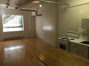 3 bedroom LOFT Dupont/Spadina ANNEX Superb Location ! Jun1 /17