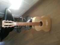 Beautiful Hand Made Acoustic Guitar