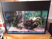 "Large Fish Tank Aquarium 36"" x 27"" x 18"" 10mm Glass"