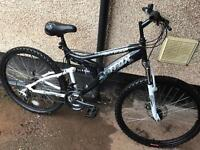 Trax mountain bike