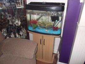 60 litre fish tank