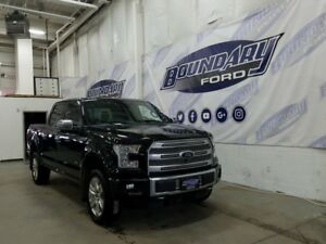 2015 Ford F-150 Platinum W/ Ecoboost, Leather, Active Park, 4WD