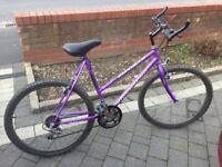 Ladies casual bike