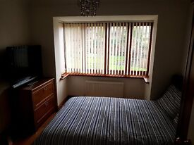 Double room for rent in Hoddesdon