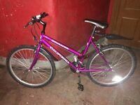 Ladies California Crusader purple mountain bike