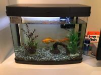 40 litre Panorama fish tank for sale