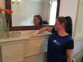 DOMESTIC CLEANING, OFFICE CLEANING, ALL LONDON