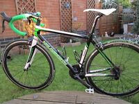Holdsworth Trentino Carbon Road Bike