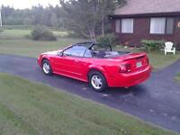 2001 Ford Mustang SRS Convertible