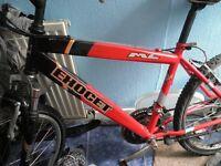 Uni-sex mountain bike for young adults/juniors or women