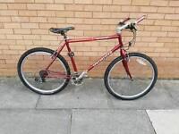 Specilized mountain bike with 26 wheel size