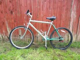 Adult green and silver mountain bike