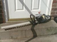 PETROL HEDGE TRIMMERS £30