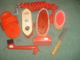 Pony grooming kit