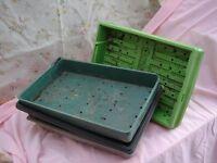 Seed trays -