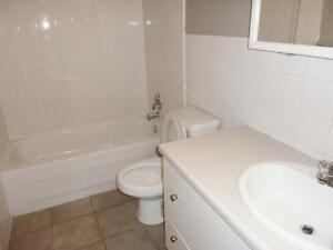 Newly renovated Bachelor for just $783!!! plus free internet!!!  Edmonton Edmonton Area image 4