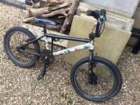 BMX Bike. Bicycle. Free to Collector.