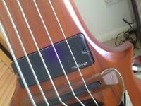 Luthier double bass professional