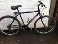 Mans cheap mountain bike