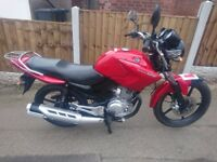YAMAHA YBR 125 2011 In Excellent Condition Full Service History