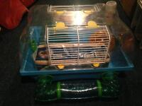 Mouse or Gerbil cage