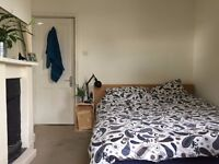Flatmate wanted for friendly flatshare