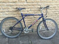 Carrera Hybrid/mountain bike