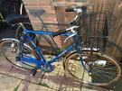 Triumph Gents Town Bike. Serviced. Beautiful Condition. Free D-Lock, Lights, Delivery. Warranty