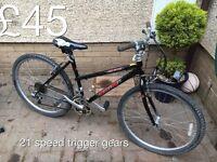 ladies mountain bike - from £30 - £75 Ladies or girls hardtail mountain bike female