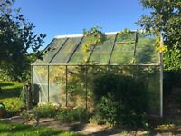 Free greenhouse for anyone willing to dismantle and collect by Sunday 15th October